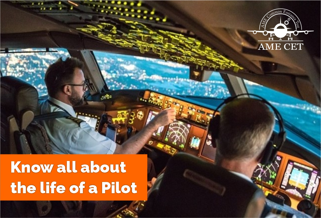 Life of a Pilot 