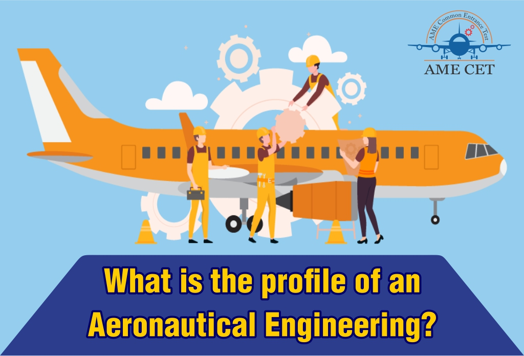 What is the profile of an Aeronautical Engineering?