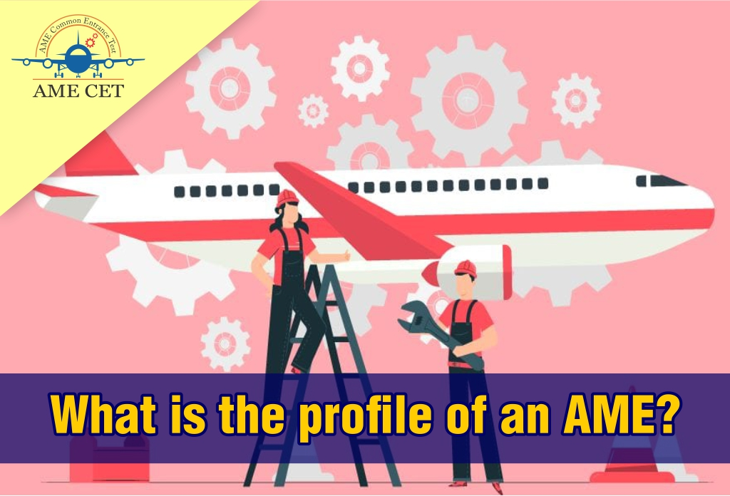 What is the profile of an AME?